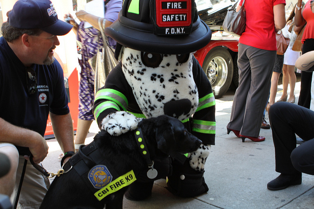 Hot Dog, the NYC Fire Safety Mascot with K-9 Sadie by State Farm